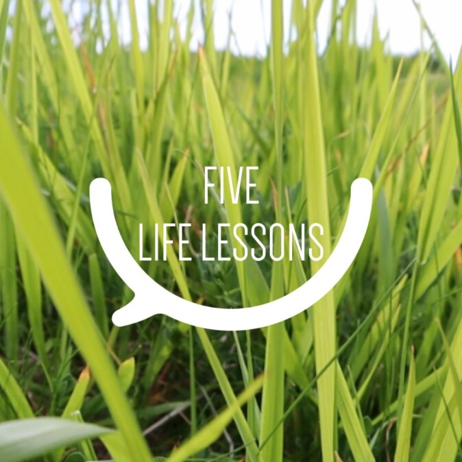 Five life lessons